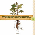 Worship Devotional: A Month In Word & Worship - July